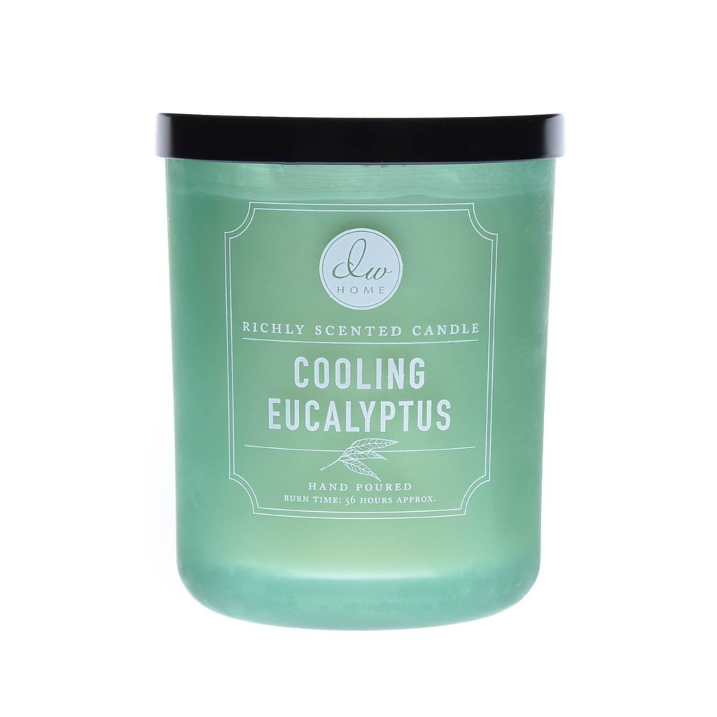 DW Home Decoware Richly Scented Candle Large Double wick 15oz --- Cooling Eculyptus