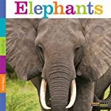 Seedlings: Elephants, Kate Riggs, 0898127823