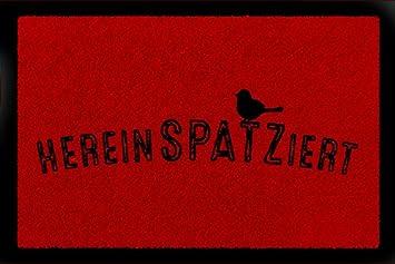 Dwthh Wei/ßer Holz Kleiderb/ügel F/ür Tops Damen Style 10 St/ück//Menge 37Cm Shirts