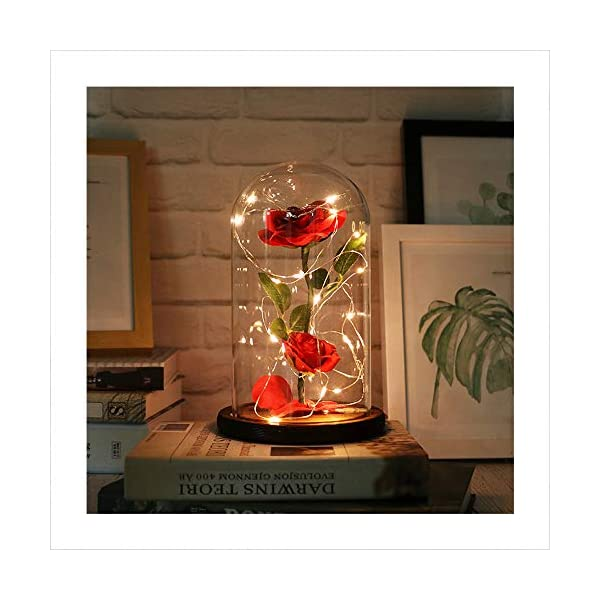 Autoday USB Beauty and The Beast Preserved Fresh Rose Flower Light Fallen Petals in a Glass Romantic Wooden Base Valentine's Day Birthday Anniversary (5.75.79″, Cool White)