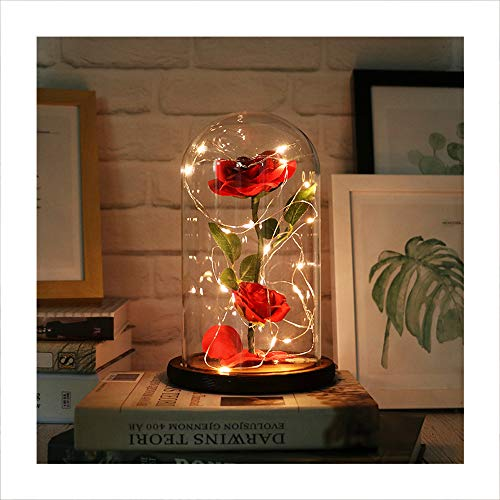 Autoday Beauty and The Beast Preserved Fresh Rose Flower Light Fallen Petals in a Glass Romantic Wooden Base Valentines Day Birthday Anniversary (5.75.79, Cool White)