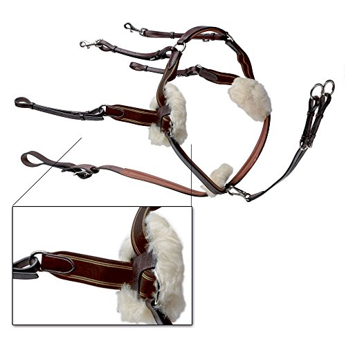 Prestige - 5 Point Breastplate with ()