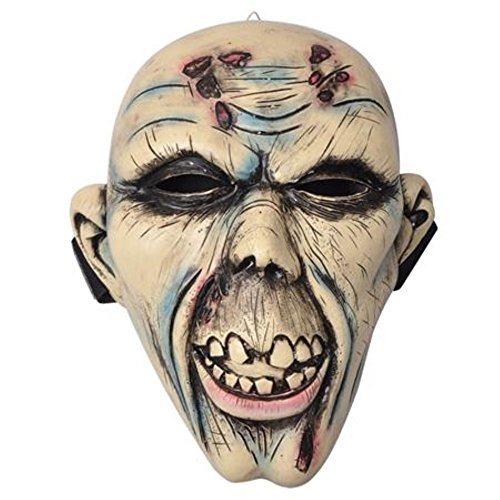 Rotting Undead Zombie Corpse Costume Cosplay Face (Rotting Corpse Costume)