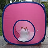 Various Combinations Kitten Cat Pet Dog Tent Toy Cat Cube Cat Outdoor Tent Cat Cube with Tunnel (1Cube) Review