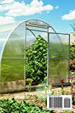 GREENHOUSE GARDENING: The Essential Guide to Learn