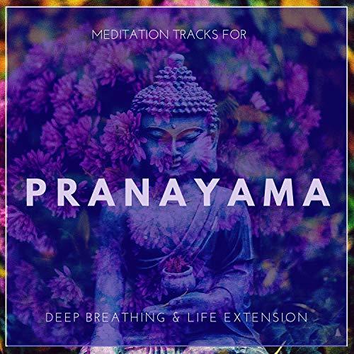 Pranayama - Meditation Tracks For Deep Breathing & Life Extension ()