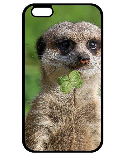 (DKLZY New Arrival Hard Plastic Case Meerkat iPhone 7/iPhone 8 phone Hard Plastic)
