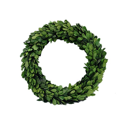 "Preserved Garden Boxwood Round Wreath 10"" By COCOMIA"