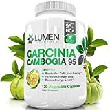 Pure Garcinia Cambogia Fruit Extract 95% HCA - Weight Management Pills for Men & Women - Shown to Decrease Appetite & Boost Metabolism (120 Count)