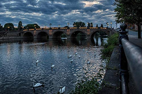 Adult Puzzles 1000 Pieces – England Rivers Bridges Evening Swans Worcester Jigsaw Puzzle for Adults, Families and Kids. Educational Game Toy Home Decoration (27.56inx19.69in)