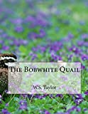 The Bobwhite Quail