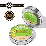Pet Gallo Flea & Tick Dog Collar Protects Your Pet for 6 Months, Fully Adjustable, Water Proof, Stops Bites & Itching, Kills Insect Eggs, 15% Tatrachlorvinphos, 46cm/18.11in Length (Small)