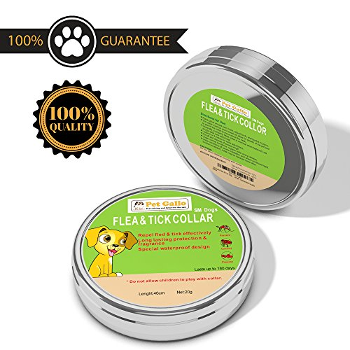 Pet Gallo Flea & Tick Dog Collar Protects Your Pet for 6 Months, Fully Adjustable, Water Proof, Stops Bites & Itching, Kills Insect Eggs, 15% Tatrachlorvinphos, 46cm/18.11in Length (Tick Bite)