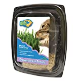 Family Cat Grass Kit, My Pet Supplies