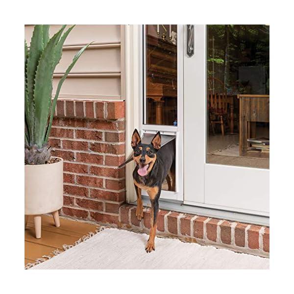 PetSafe Sliding Glass Pet Doors – Extreme Weather Door or 2-Piece Standard Door – Cat or Dog Door Great for Apartments…