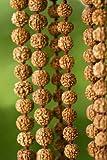 Crystal Rudraksha Seed Mala - 6.5mm