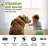 Dog No Bark Collar with Smart Detection Vibration