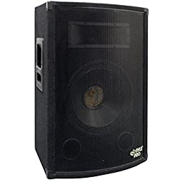 PYLE-PRO PADH1079 - 500 Watt 10\'\' Two-Way Speaker Cabinet
