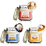 Apple, Blueberry and Pumpkin Pies Scented Candles - Soy Candles | Extra Long Lasting | Handmade in The USA | 8 oz Mason Jars