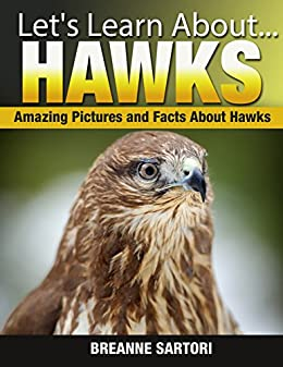 Hawks: Amazing Picture and Facts About Hawks (Let's Learn About) by [Sartori, Breanne]
