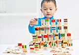 HSOMiD Wooden Educational Toys For Kids (Domino)