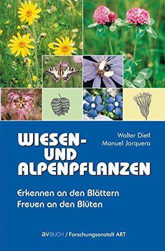 Wiesen- und Alpenpflanzen Erkennen an den Blättern - Freuen an den Blüten