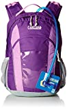 Camelbak Products Scout Hydration Backpack, Pansy/African Violet, 50-Ounce