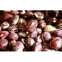 Good Mother Stallard Pole Bean Seeds - 50 Seeds