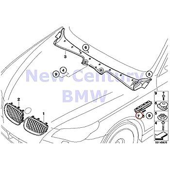Amazon Com Genuine Bmw M5 E60 E61 Sedan Wagon Front Wing M Grille