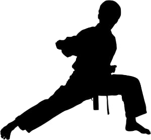 Martial Arts Wall Decal Sticker 32 - Decal Stickers and Mural for Kids Boys Girls Room and Bedroom. Karate Sport Wall Art for Home Decor and Decoration - Martial Art Kung Fu Taekwondo Silhouette Mural