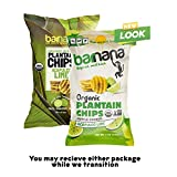 Barnana Organic Plantain Chips - Acapulco Lime - 5
