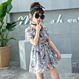 wangxiyan Summer Girl Dresses Children Clothing Butterfly Dress for Girls Clothes Party Princess Dress Baby Kids Vestidos(Multi-Color,67 Years)