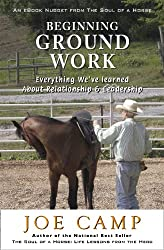 BEGINNING GROUND WORK: Everything We've Learned about Relationship & Leadership (eBook Nuggets from The Soul of a Horse 6) (English Edition)