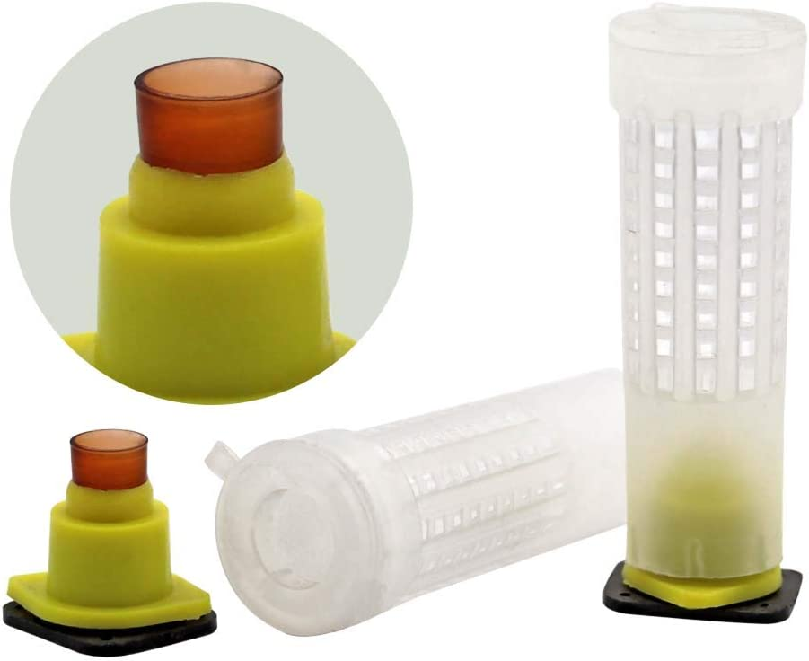M.Z.A 110PCS Queen Cell Cups Beekeeping Rearing Cell Kit Bee Feeding Tools for Apiculture Bee Keeper Nurturing Supplies