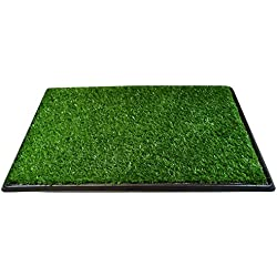 Downtown Pet Supply Dog Pee Potty Pad, Bathroom Tinkle Artificial Grass Turf, Portable Potty Trainer (20 x 25 inches - 3 Layers)
