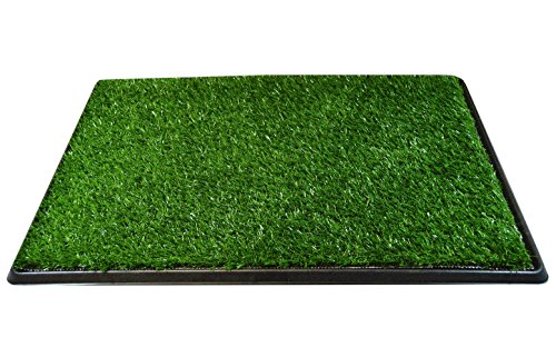 Downtown Pet Supply Dog Pee Potty Pad, Bathroom Tinkle Artificial Grass Turf, Portable Potty Trainer (20 x 25 Inch - 3 Layers)