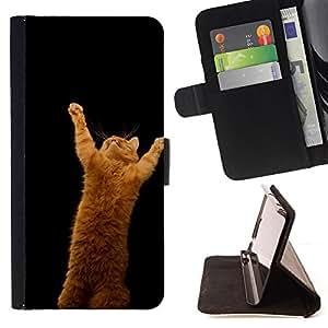 BullDog Case - FOR/LG G2 D800 / - / CUTE FUNNY - ORANGE CAT /- Monedero de cuero de la PU Llevar cubierta de la caja con el ID Credit Card Slots Flip funda de cuer
