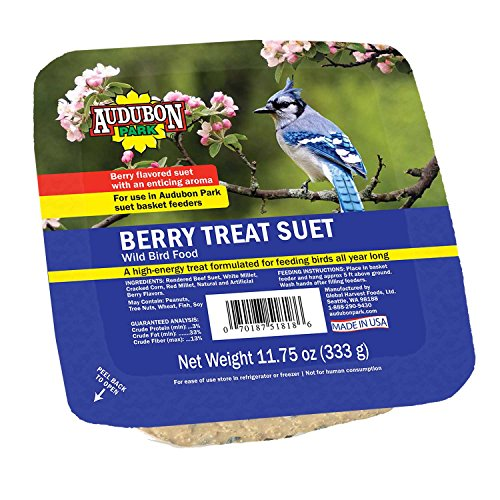Audubon Park 13066 Berry Treat Suet Cake Wild Bird Food, 11.75-Ounces ()