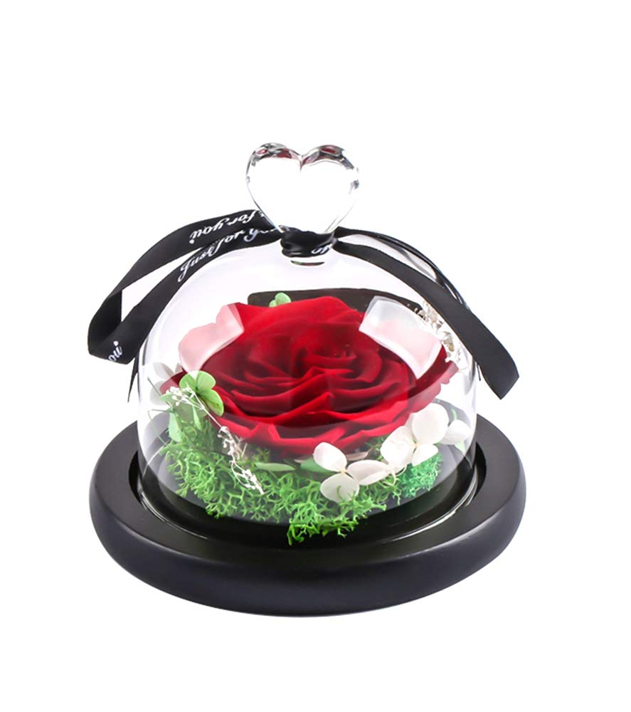 MAMS-Preserved-Real-Rose-in-Glass-Dome-Gift-Eternal-Flower