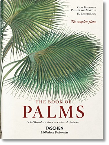martius-the-book-of-palms