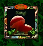 Fungi (Kid's Guide to the Classification of Living Things)