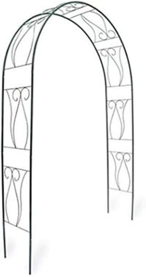 BOPP Arcos de jardín, arcos de rosa de hierro antioxidante, arco de enrejado, resistente al agua, extraíble, fácil de montar, para escalar, plantar o para jardín: Amazon.es: Jardín