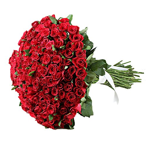 IGP 100 Red Roses Bunch (Bunch of 100)