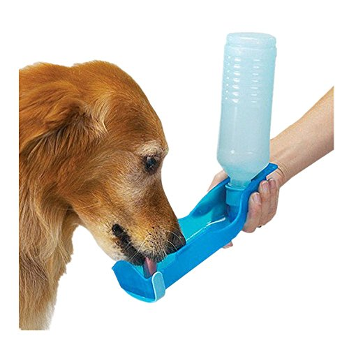 Teal Dog Flea Treatment - 8