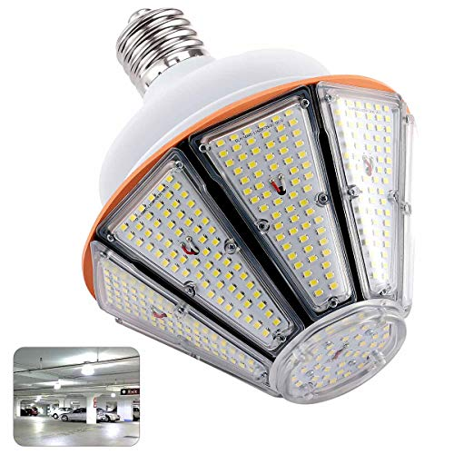 250W Flood Light Weight