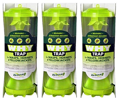 Rescue WHYTR WHY Trap For Wasps/Hornets/Yellow Jackets (3 TRAPS) by RESCUE!