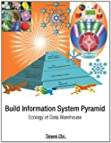 Build Information System Pyramid, Taiwei Chi, 1468501518