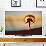 aolankaili TV dust Cover A Dandelion which Will Soon Travel TV dust Cover W19 x H30 INCH/TV 32''