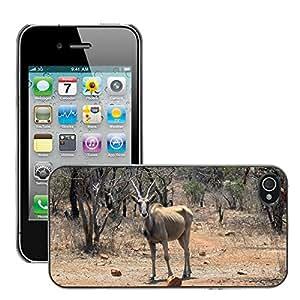 Just Phone Cover Etui Housse Coque de Protection Cover Rigide pour // M00139153 Naturaleza Buck Bush seco Fawn Aire // Apple iPhone 4 4S 4G