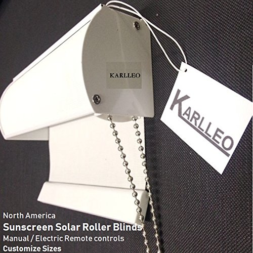 Manual/Motorized Window Sunscreen Solar Roller Blinds Curtain Websize Priced at Manual(1pc,39'' W x 39''L,Standard) Contact us for Customize Size by karlleo-curtain